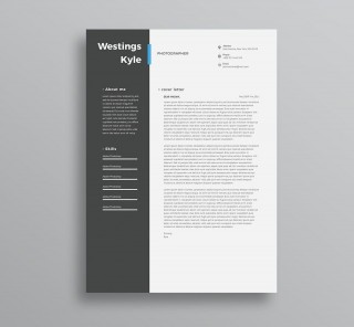 004 Amazing Professional Resume Template 2018 Free Download Photo 320