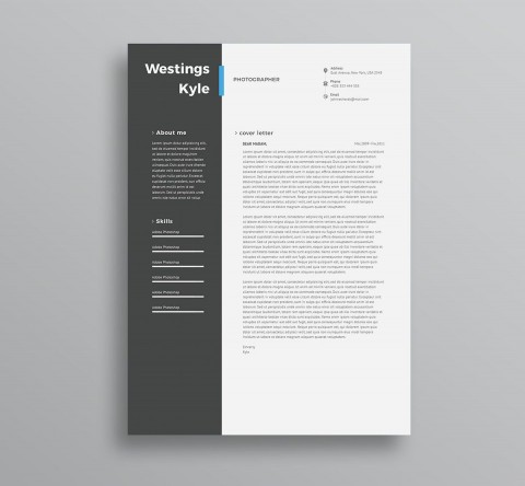 004 Amazing Professional Resume Template 2018 Free Download Photo 480