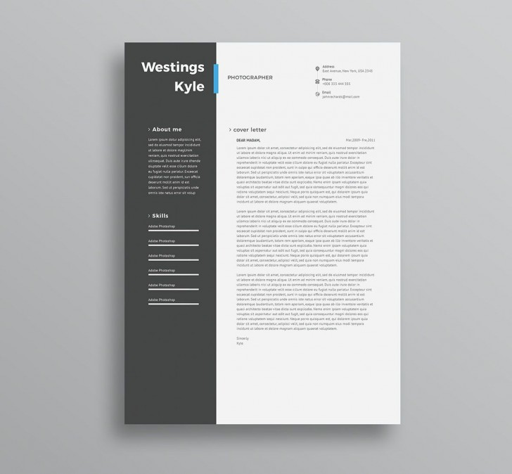 004 Amazing Professional Resume Template 2018 Free Download Photo 728
