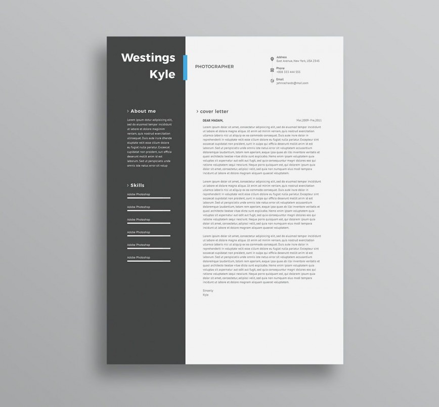 004 Amazing Professional Resume Template 2018 Free Download Photo 868