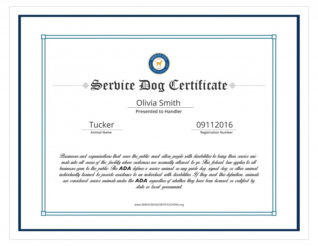 004 Amazing Service Dog Certificate Template Idea  Printable Id FreeLarge