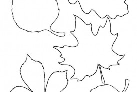 004 Astounding Leaf Template With Line Design  Fall Printable Blank