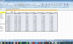 004 Awesome Cash Flow Template Excel Sample  2007 Download