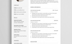 004 Awful Photoshop Resume Template Free Download Highest Quality  Creative Cv Psd