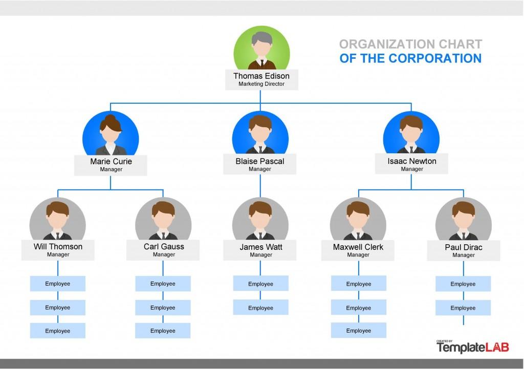 004 Beautiful Word Organization Chart Template Image  Free Organizational 2007 2013 OrgLarge
