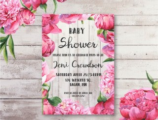 004 Breathtaking Baby Shower Invitation Girl Free Printable Picture  Twin320
