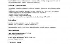 004 Dreaded Free Student Nurse Resume Template Idea  Templates