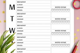 004 Fascinating Meal Plan Template Pdf Photo  Sample Diabetic