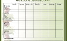 004 Fearsome Free Meal Planner Template Word Highest Quality  Editable Weekly Monthly