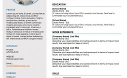 004 Frightening Free Professional Resume Template Microsoft Word Concept  Cv 2010