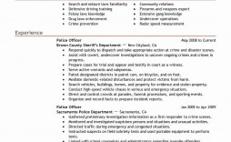 004 Imposing Law Enforcement Resume Template Concept  Federal Promotion