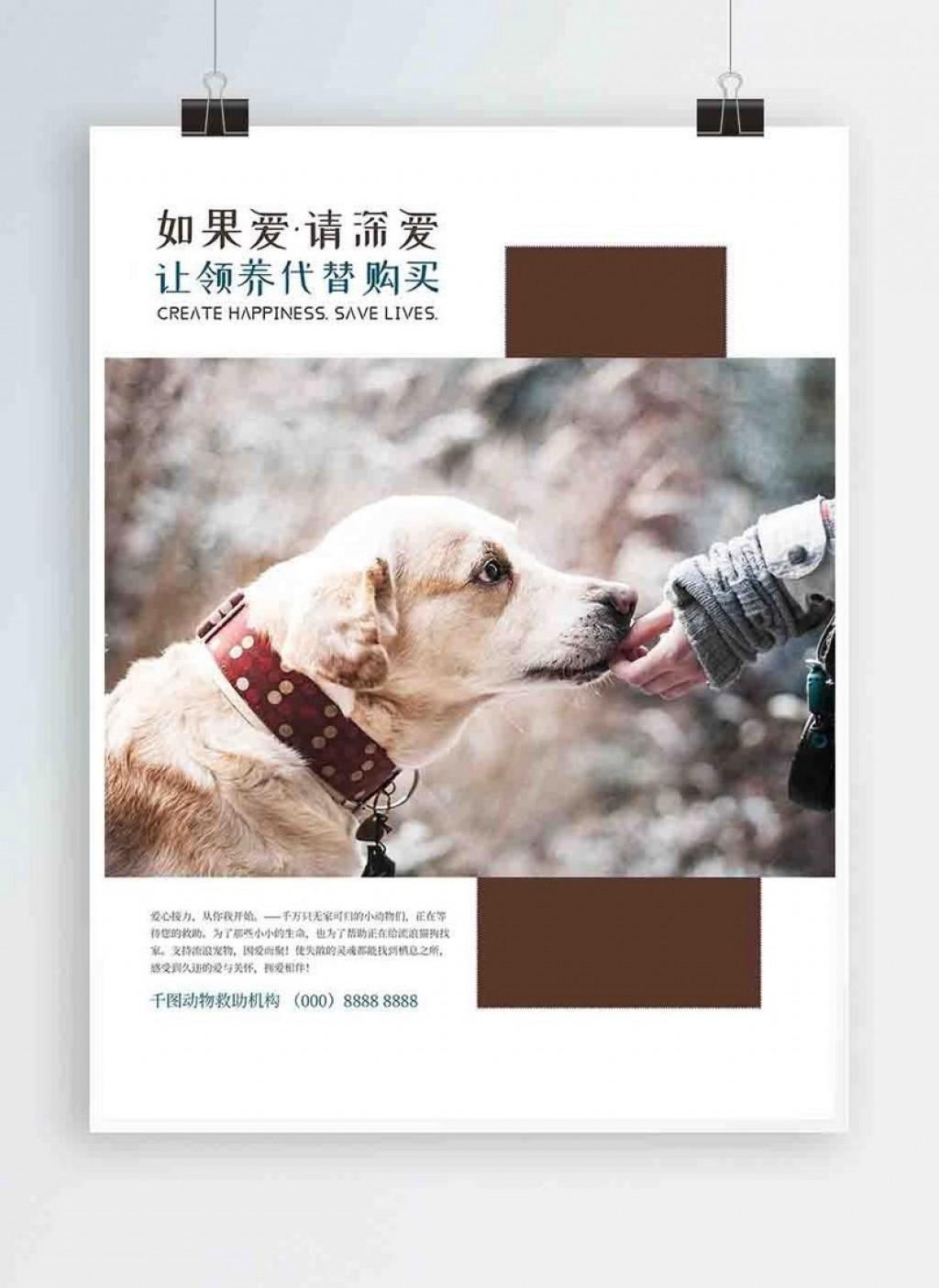 004 Imposing Pet Adoption Flyer Template High Definition  Free Event DogLarge