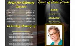 004 Impressive Example Funeral Programme Sample  Format Of Program Template Free To Download
