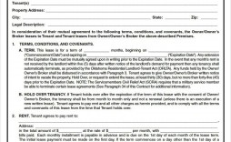004 Impressive Renter Lease Agreement Template High Definition  Apartment Form Early Termination Of By Tenant South Africa Free