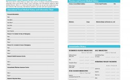 004 Magnificent Family Medical History Template High Definition  Questionnaire Free Excel