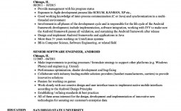 004 Magnificent Software Engineer Resume Template Inspiration  Word Format Free Download Microsoft