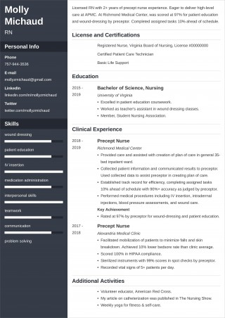 004 Marvelou New Grad Nursing Resume Template Highest Quality  Graduate Nurse Practitioner320