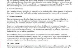 004 Phenomenal Digital Marketing Plan Example Pdf High Resolution  Free Template Busines Sample