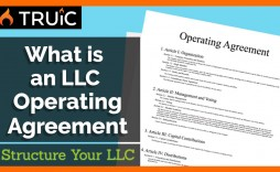 004 Phenomenal Operating Agreement Template For Llc Highest Clarity  Form Florida Texa