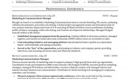 004 Phenomenal Professional Resume Template Example Photo  Examples Layout Cv Writing Format