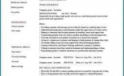 004 Phenomenal Rn Graduate Resume Template Inspiration  New Nurse Practitioner