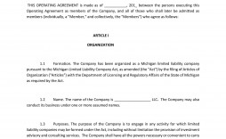 004 Rare Operation Agreement Llc Template Example  Operating Pdf New York