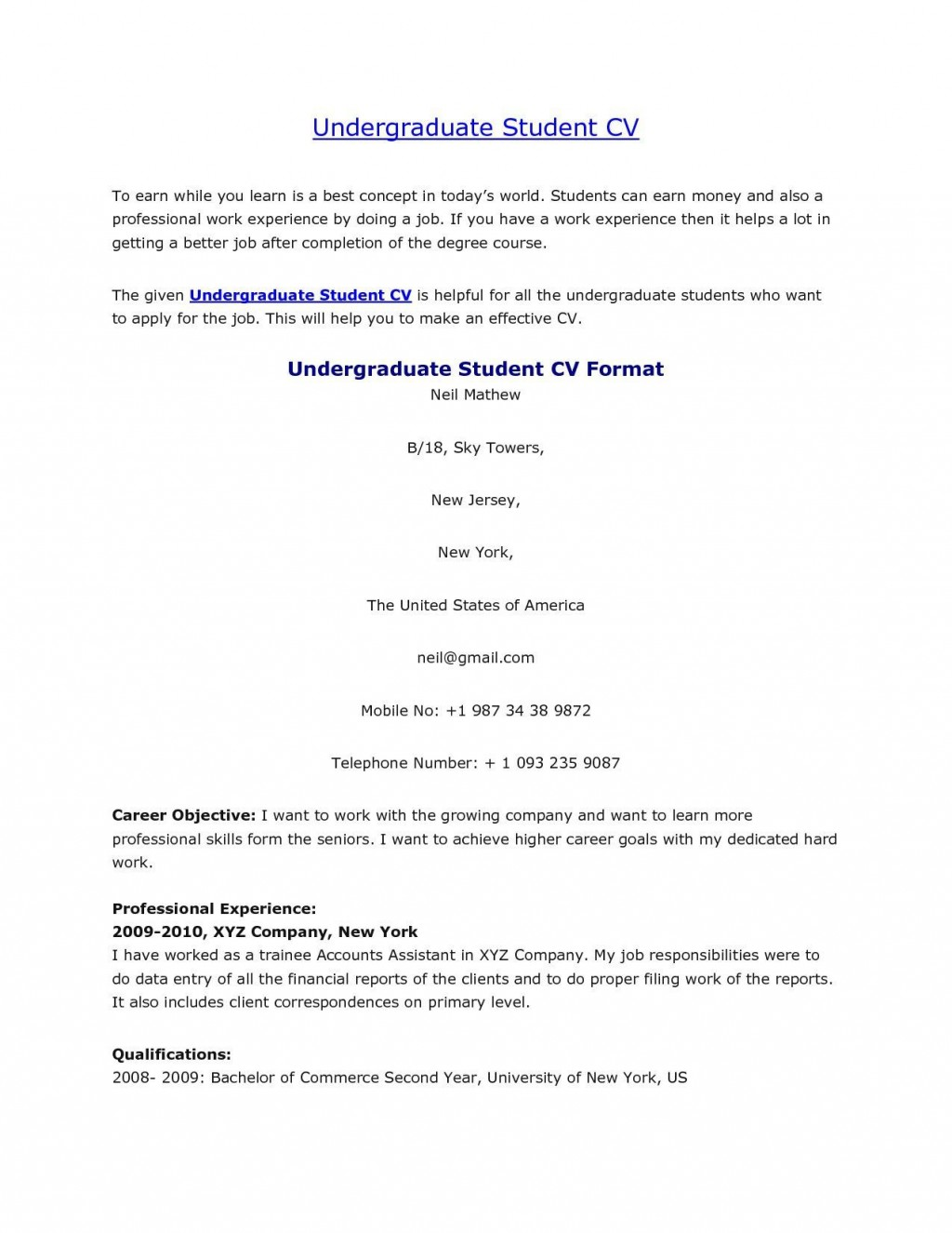 004 Rare Undergraduate Student Cv Template Sample  Pdf DownloadLarge