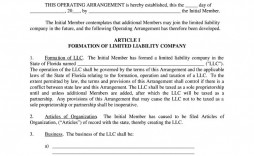 004 Remarkable Llc Operating Agreement Template Free Highest Clarity  Single Member Pdf Simple Download