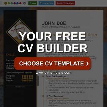 004 Shocking Professional Cv Template Free Online Photo  Resume360