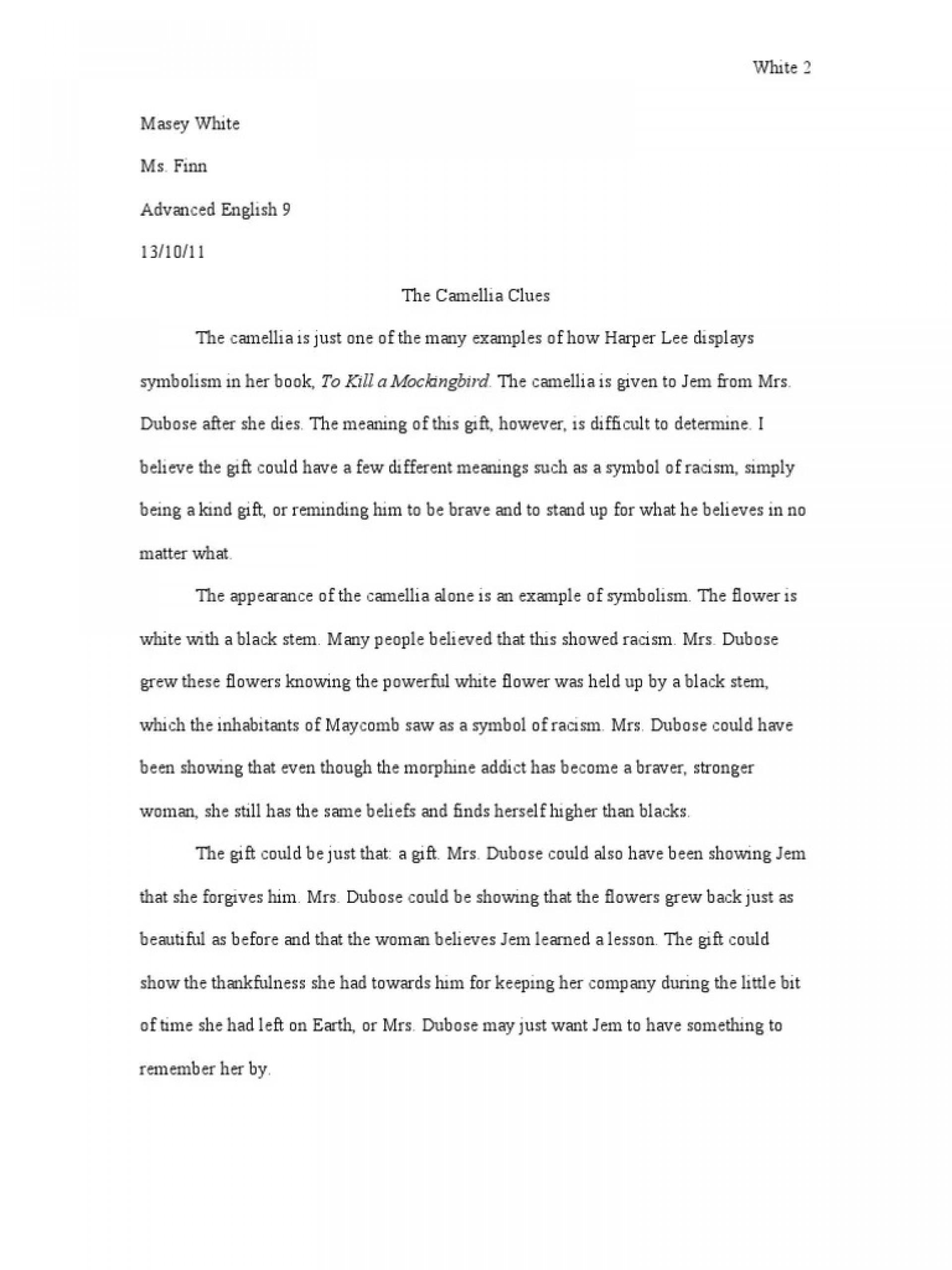 004 Singular To Kill A Mockingbird Essay High Definition  Question Courage Thesi Pdf1920