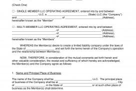 004 Staggering Llc Partnership Agreement Template Idea  Free Operating