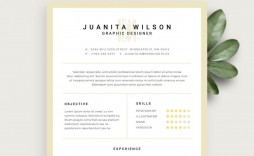 004 Striking Free Resume Template For Page Idea  Pages Apple Mac