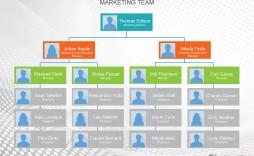 004 Striking Microsoft Organizational Chart Template Word High Definition  Free 2013 Hierarchy