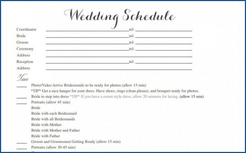 004 Striking Wedding Timeline Template Free Inspiration  Day Excel Program480