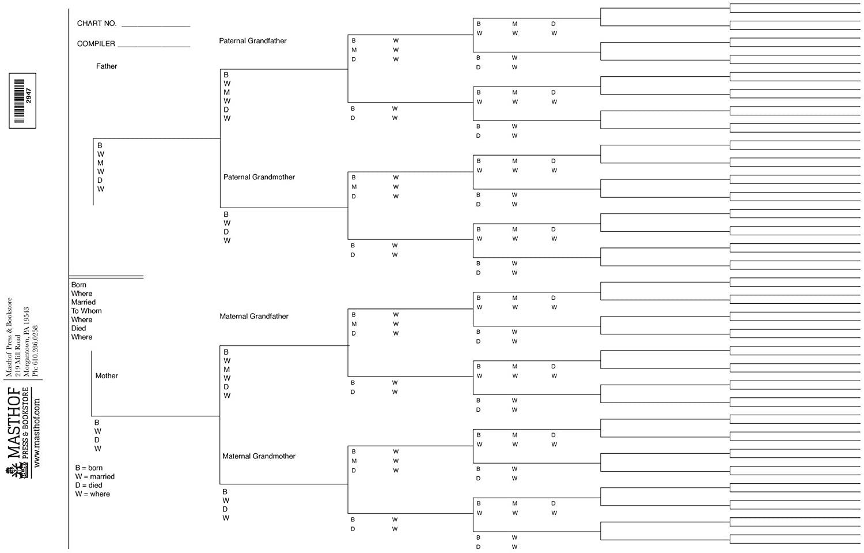 004 Stunning 7 Generation Family Tree Template High Def  Blank Free EditableFull