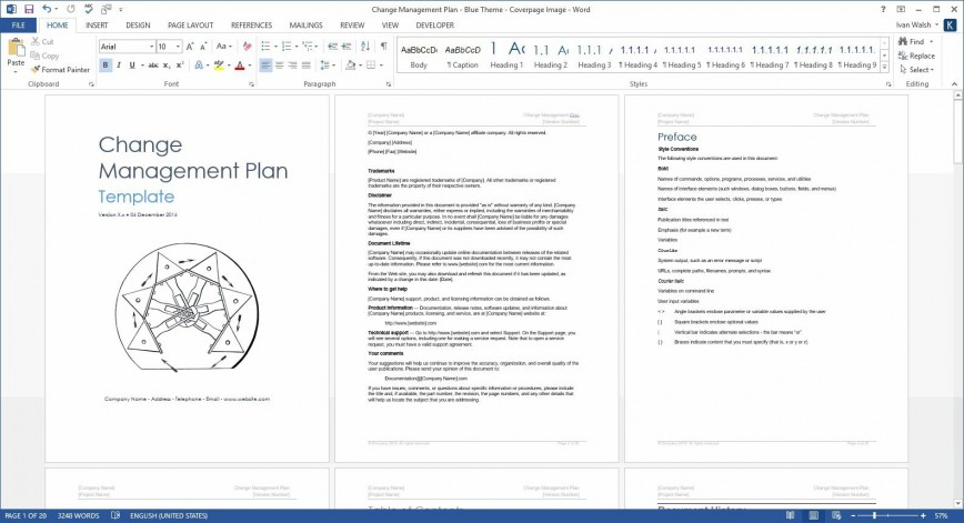 004 Surprising Change Management Plan Template Concept 868