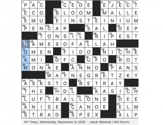 004 Top Praise Crossword Clue Inspiration  9 Letter 7 Highly 6320