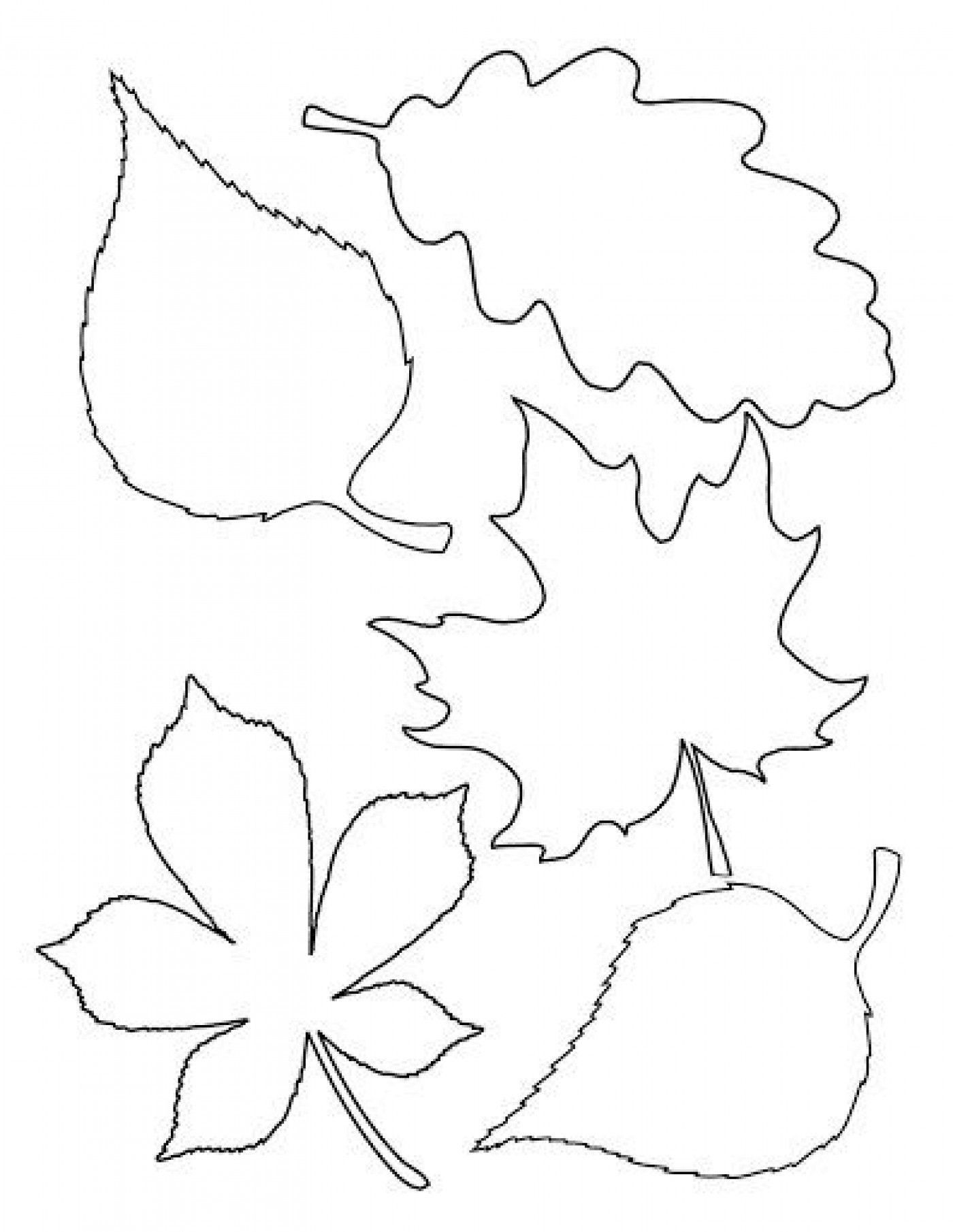 004 Unique Blank Leaf Template With Line Design  Printable1400