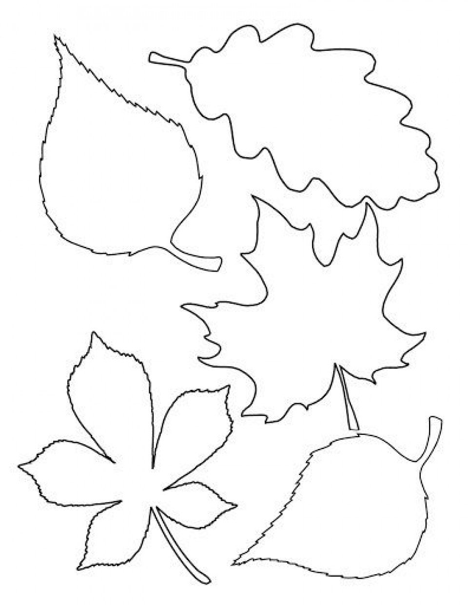 004 Unique Blank Leaf Template With Line Design  Printable960