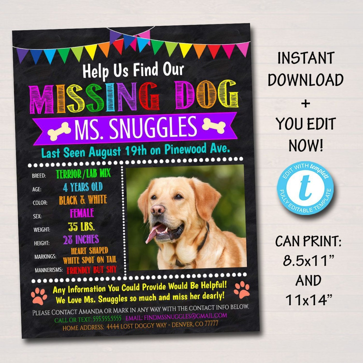 004 Unique Lost Dog Flyer Template Concept  Printable Missing Pet1400