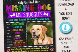 004 Unique Lost Dog Flyer Template Concept  Printable Missing Pet