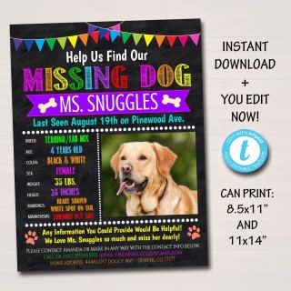 004 Unique Lost Dog Flyer Template Concept  Printable Missing Pet320