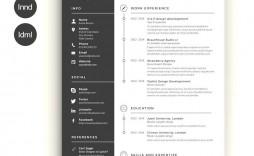 004 Wonderful Creative Resume Template Word Example  Professional Free Download Editable