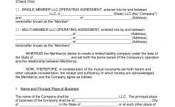 005 Amazing Llc Operating Agreement Template Free Idea  Single Member Pdf Simple Download