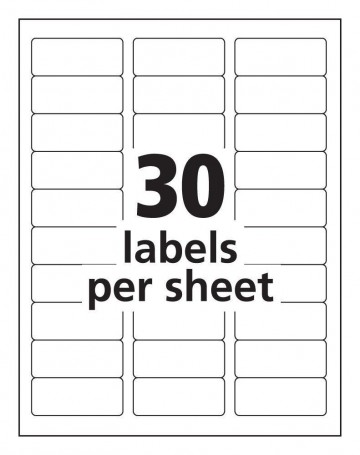 005 Amazing Microsoft Word Label Template Free High Def  Cd Dvd Water Bottle360