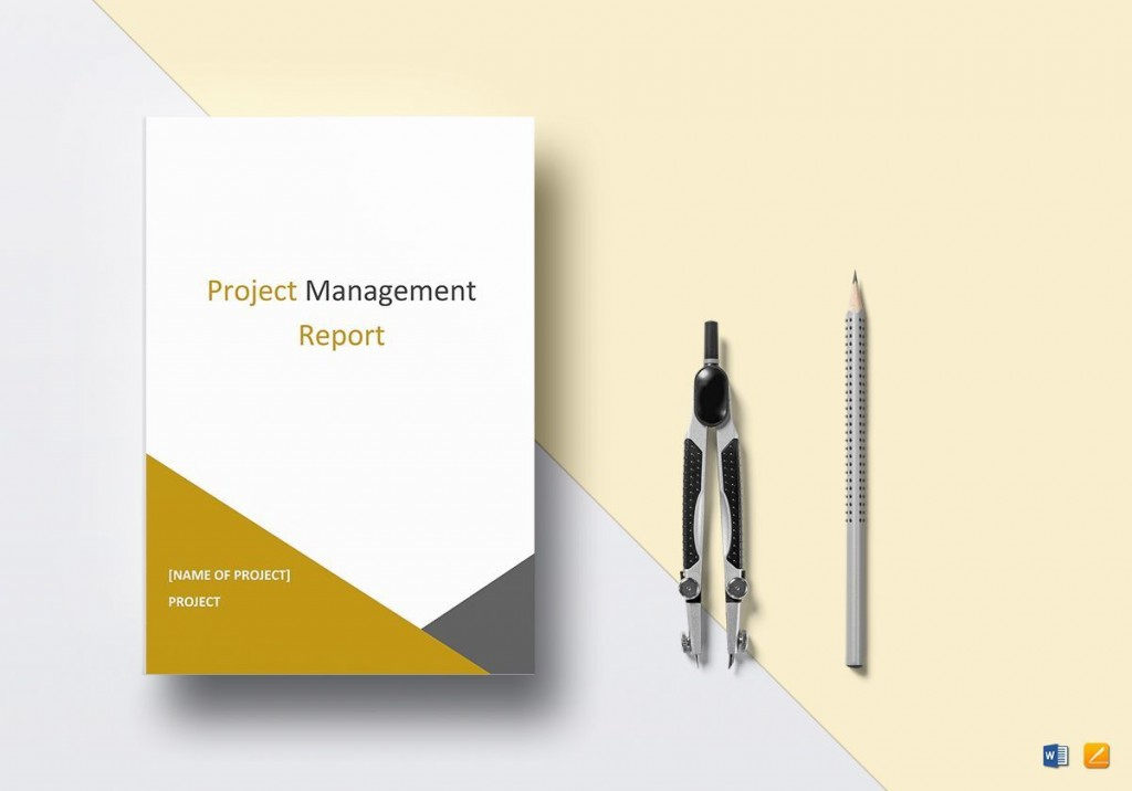 005 Archaicawful Project Management Report Template Word High Definition  Free StatuLarge