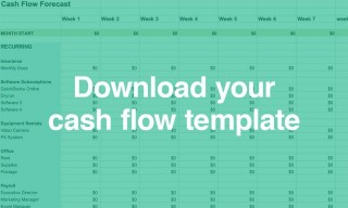 005 Astounding Cash Flow Template Excel Free Photo  Statement Download Format In320