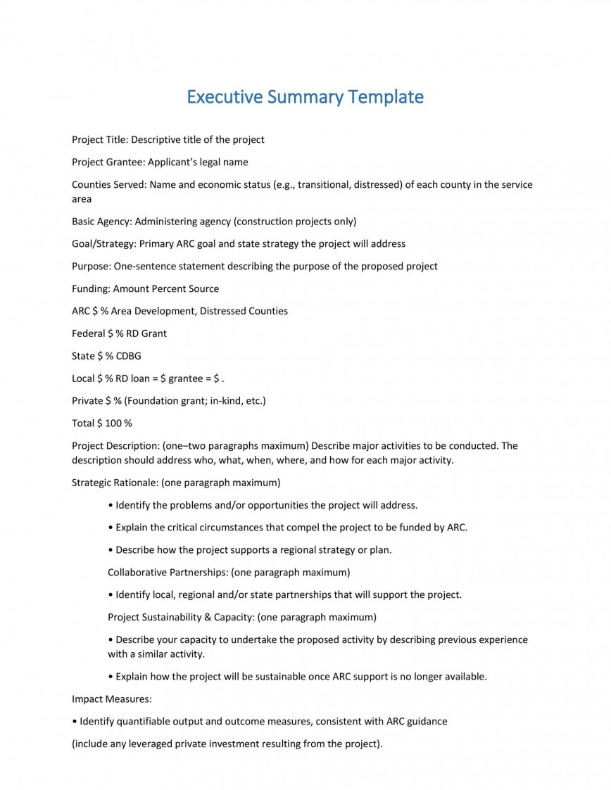 005 Beautiful Project Executive Summary Template Highest Clarity  Doc Ppt