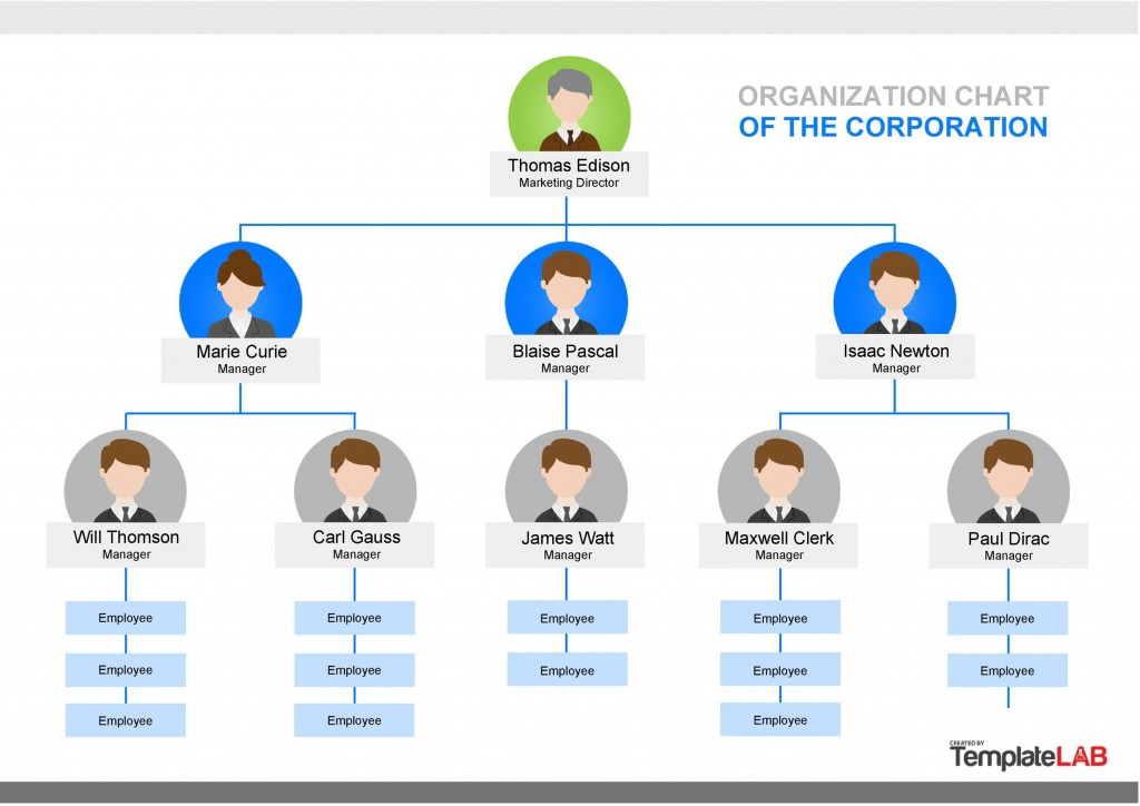 005 Best Org Chart Template Microsoft Word 2010 Sample Large