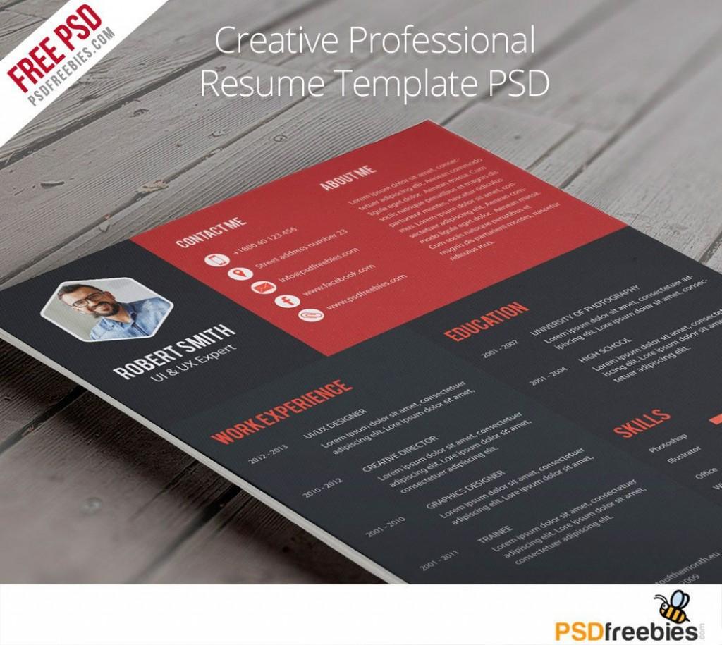 005 Dreaded Creative Resume Template Free Download Psd Idea  CvLarge